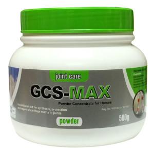 GCS MAX 500G