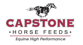CAPSTONE FEEDS LOGO