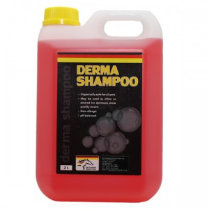derma shampoo