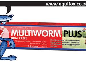 multiworm