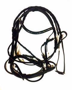 Silver chain bridle