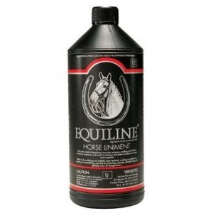 horse liniment