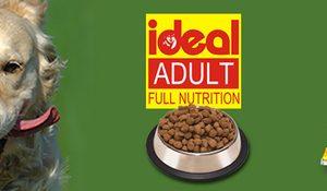 idea dog food 8kg
