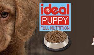 idea puppy food