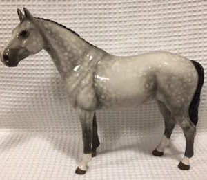 thoroughbred grey horse