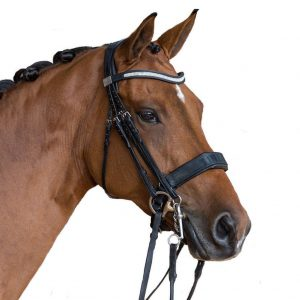 fairfax bridle with bling