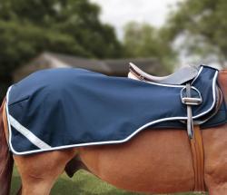 Premier Equine Exercise Sheet